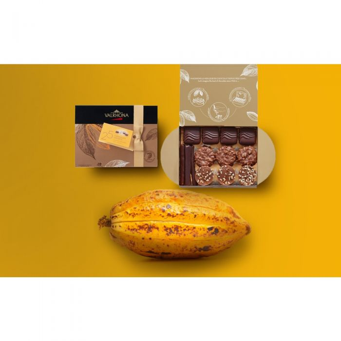 ballotin 25 bombones de chocolate - 230g por valrhona